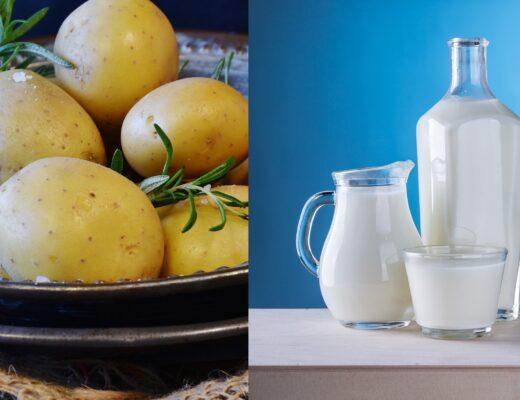 trị mụn bằng khoai tây và sữa tươi