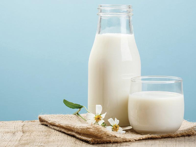 Sữa tươi Vinamilk không đường hỗ trợ cho quá trình giảm cân